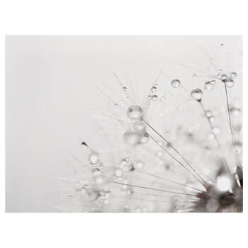 Waterdrops Printed Canvas