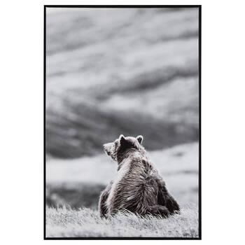 Bear in a Field Printed Framed Art