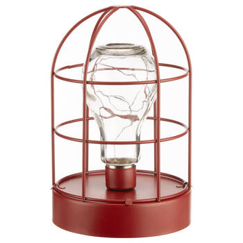Caged Bulb with LED Light