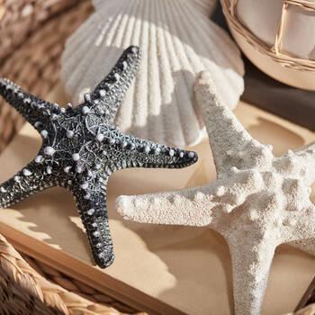 Étoile de mer en résine noir