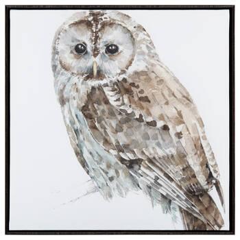 Owl Framed Art