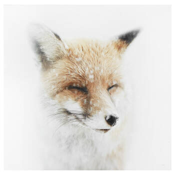 Smiling Fox Printed Canvas
