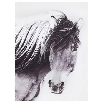 Horse Printed Canvas