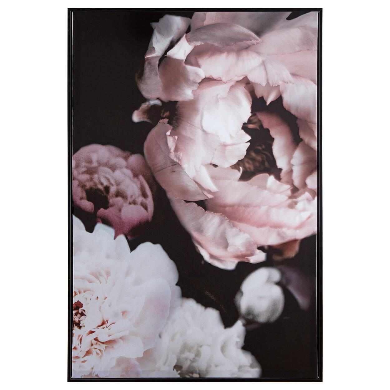 Peonies Printed Framed Art