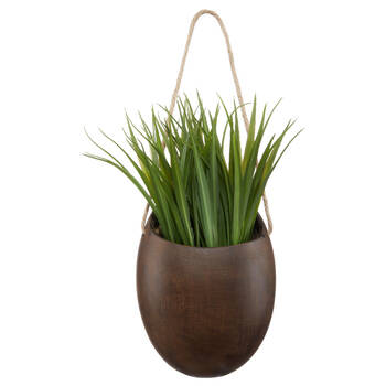 Wall Greenery with Mango Wood Pot