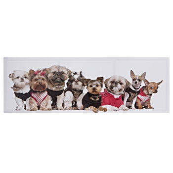 Puppies Printed Canvas