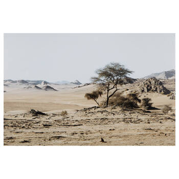 Sahara Desert Printed Canvas