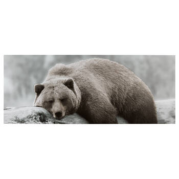 Sleepy Brown Bear Printed Canvas