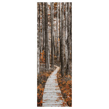 Pathway Printed Canvas II