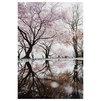 Cherry Blossom Forest Printed Canvas