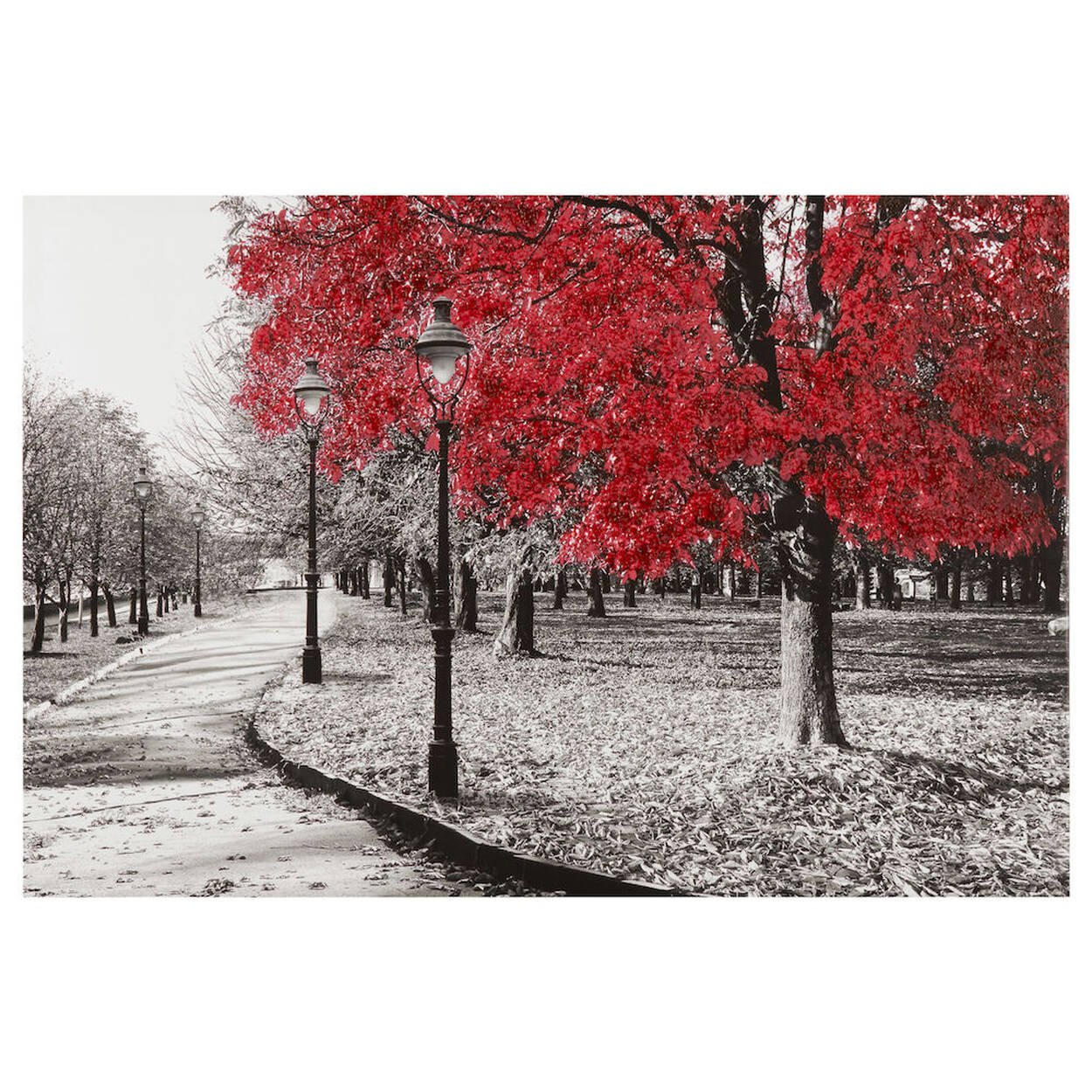 Trees in Park Printed Canvas with Gel Embellishment