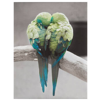 Kissing Parrots Printed Canvas