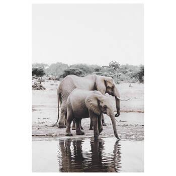 Tableau imprimé mère et bébé éléphant