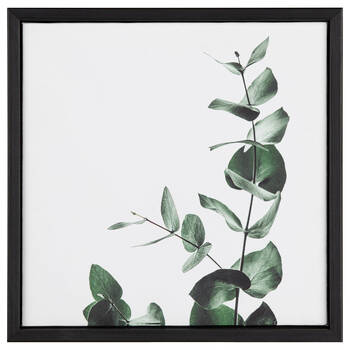 Foliage Printed Framed Art