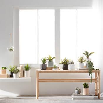 Terrarium suspendu avec plantes grasses artificielles