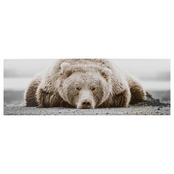 Sleepy Bear Printed Canvas