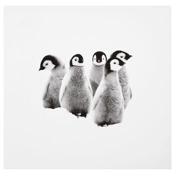 Penguins Printed Canvas