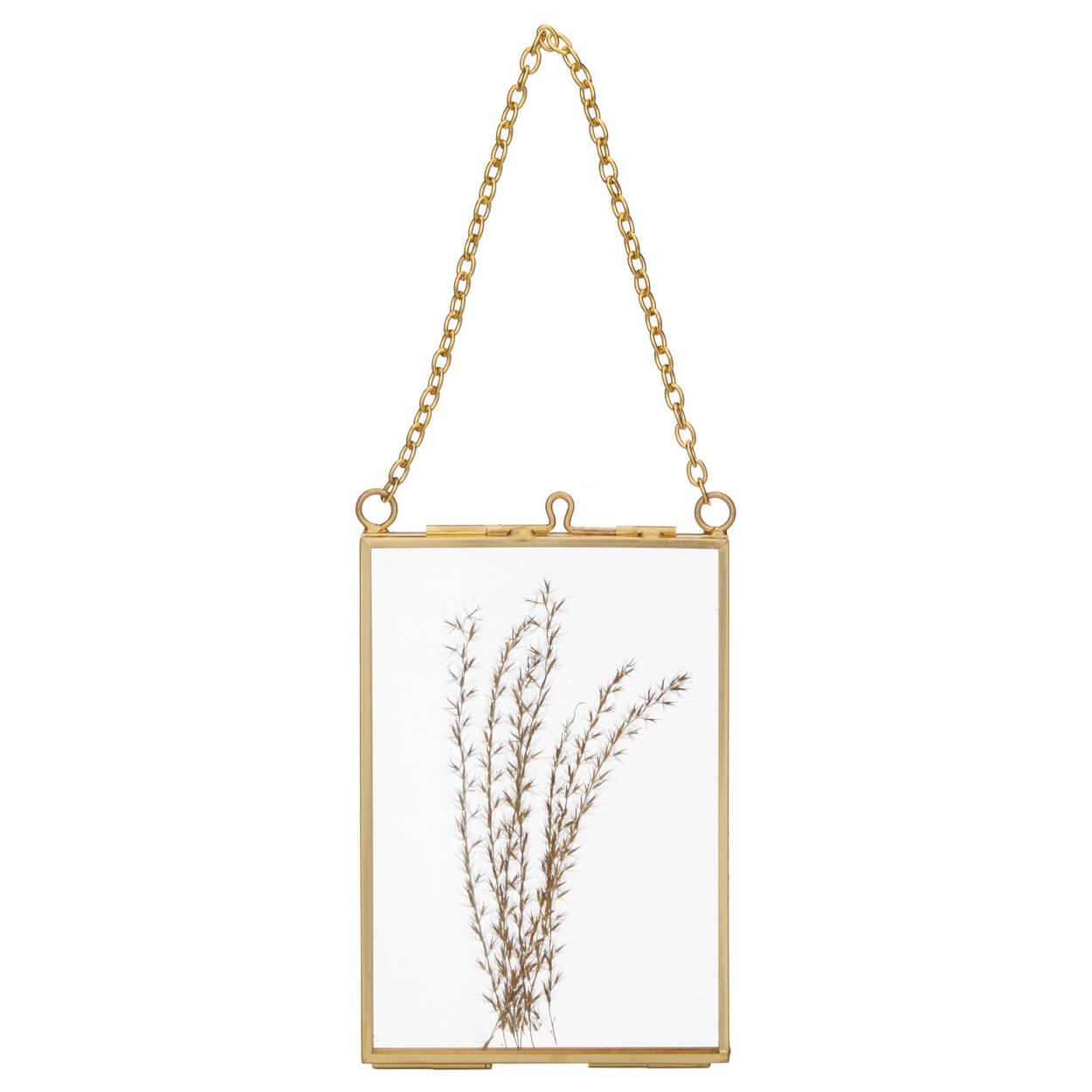 Small Gold Framed with Pampas