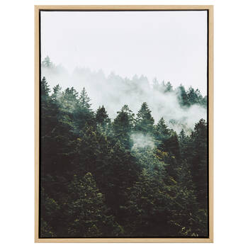 Green Forest Framed Canvas
