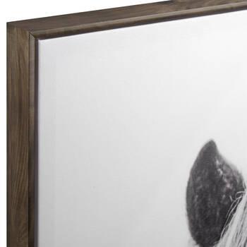 Icelandic Horse Framed Printed Canvas