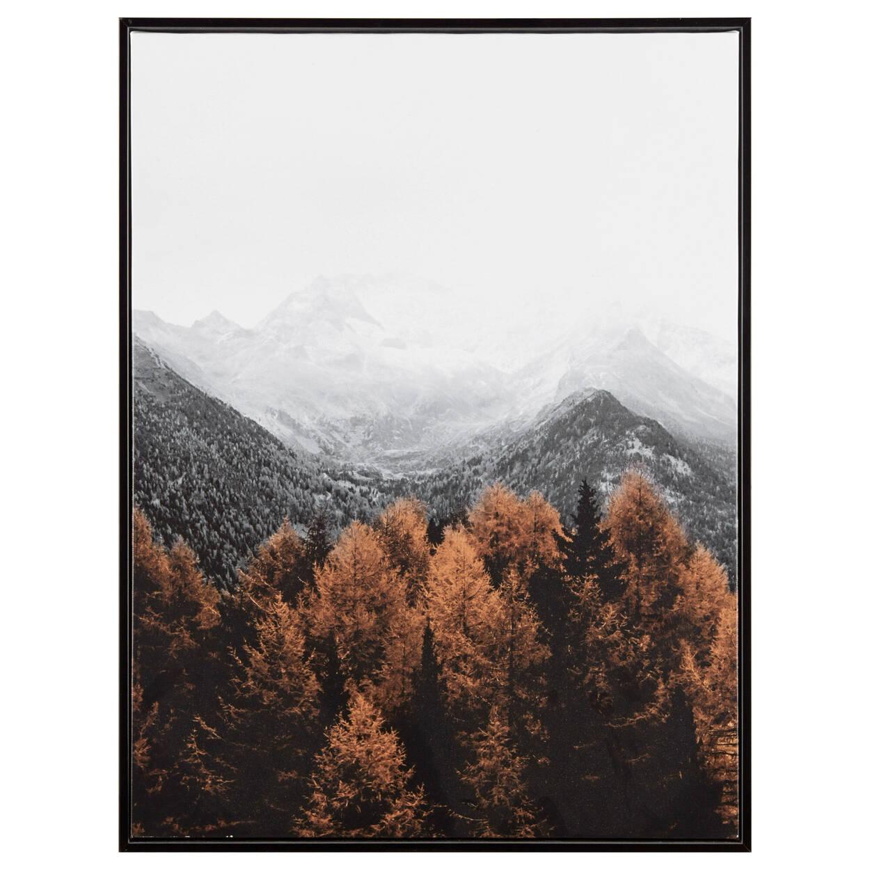 Cadre imprimé paysage forestier