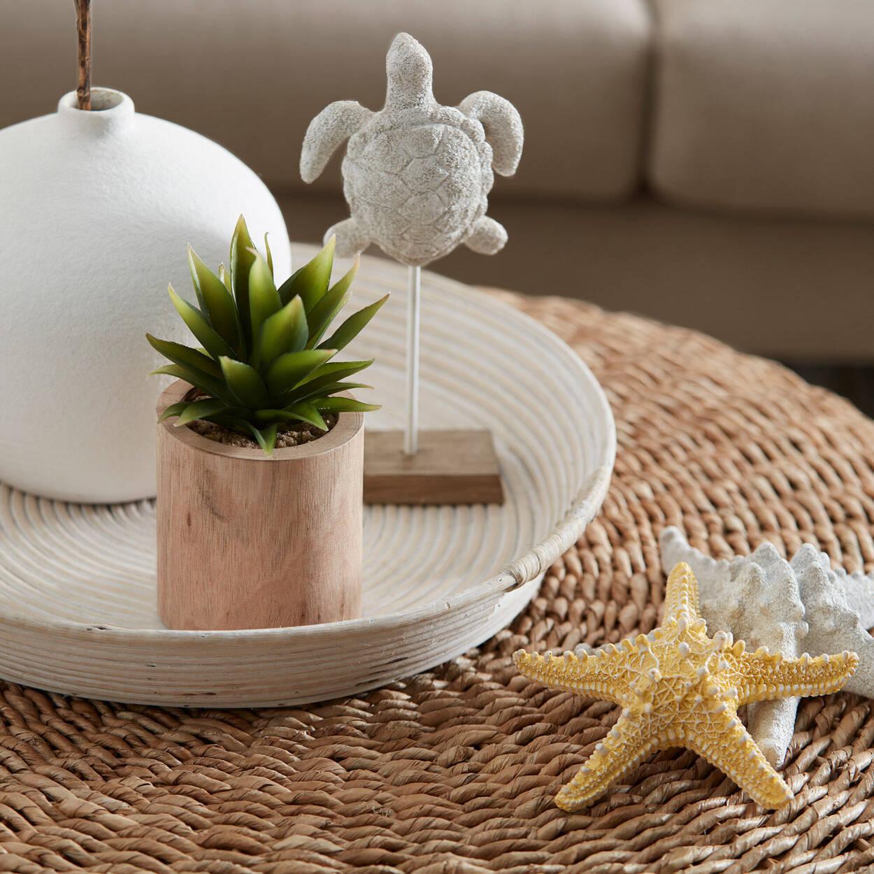 Étoile de mer en sable blanc