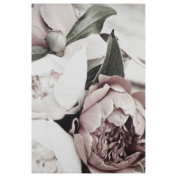 Peonies Printed Canvas