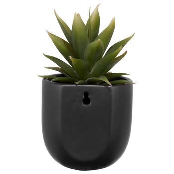 Sword Grass in Ceramic Pot