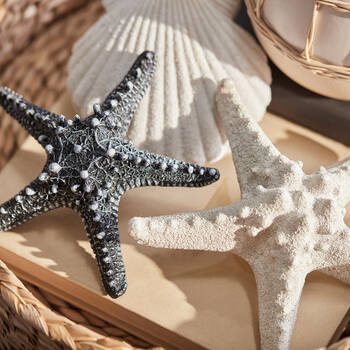Black Resin Decorative Starfish