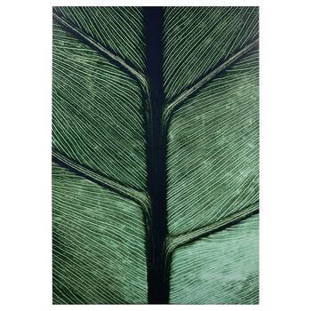 Tableau imprimé feuille verte en gros plan