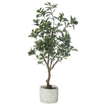 Artificial Aralia Tree