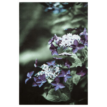 Pretty Florals Printed Canvas