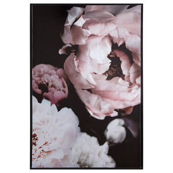Peonies Printed Framed Art
