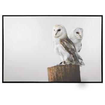 Owls Framed Art