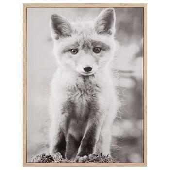 Baby Fox Framed Art