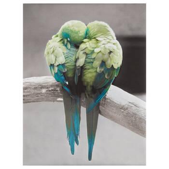 Kissing Parrots Printed Canvas