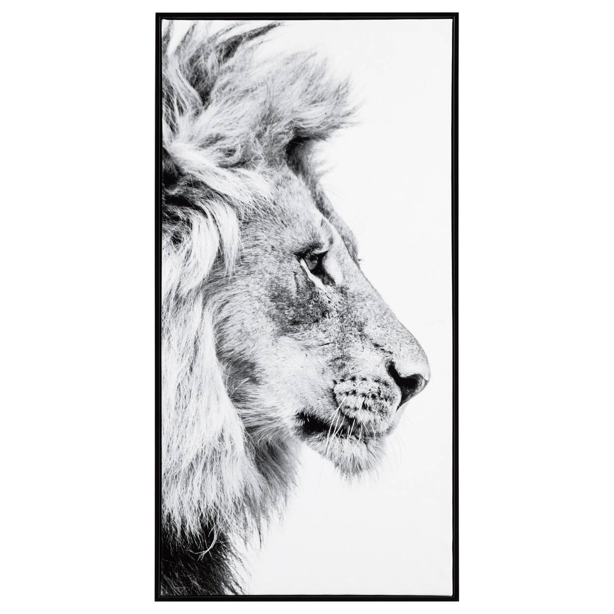 Cadre imprimé profil de lion
