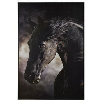 Dark Horse Framed Printed Canvas