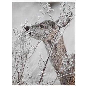 Deer in Branches Printed Canvas