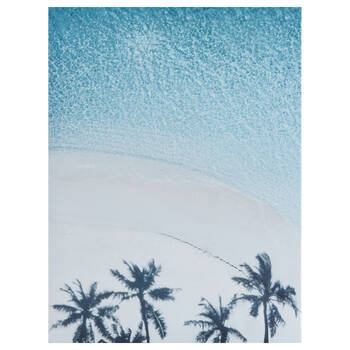 Palm Trees Shadow Printed Canvas