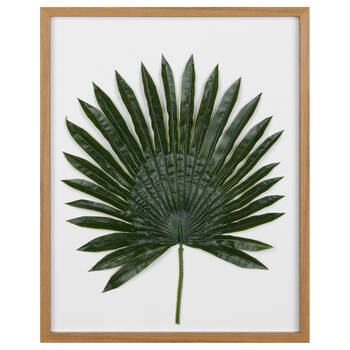 Framed 3-D Leaf
