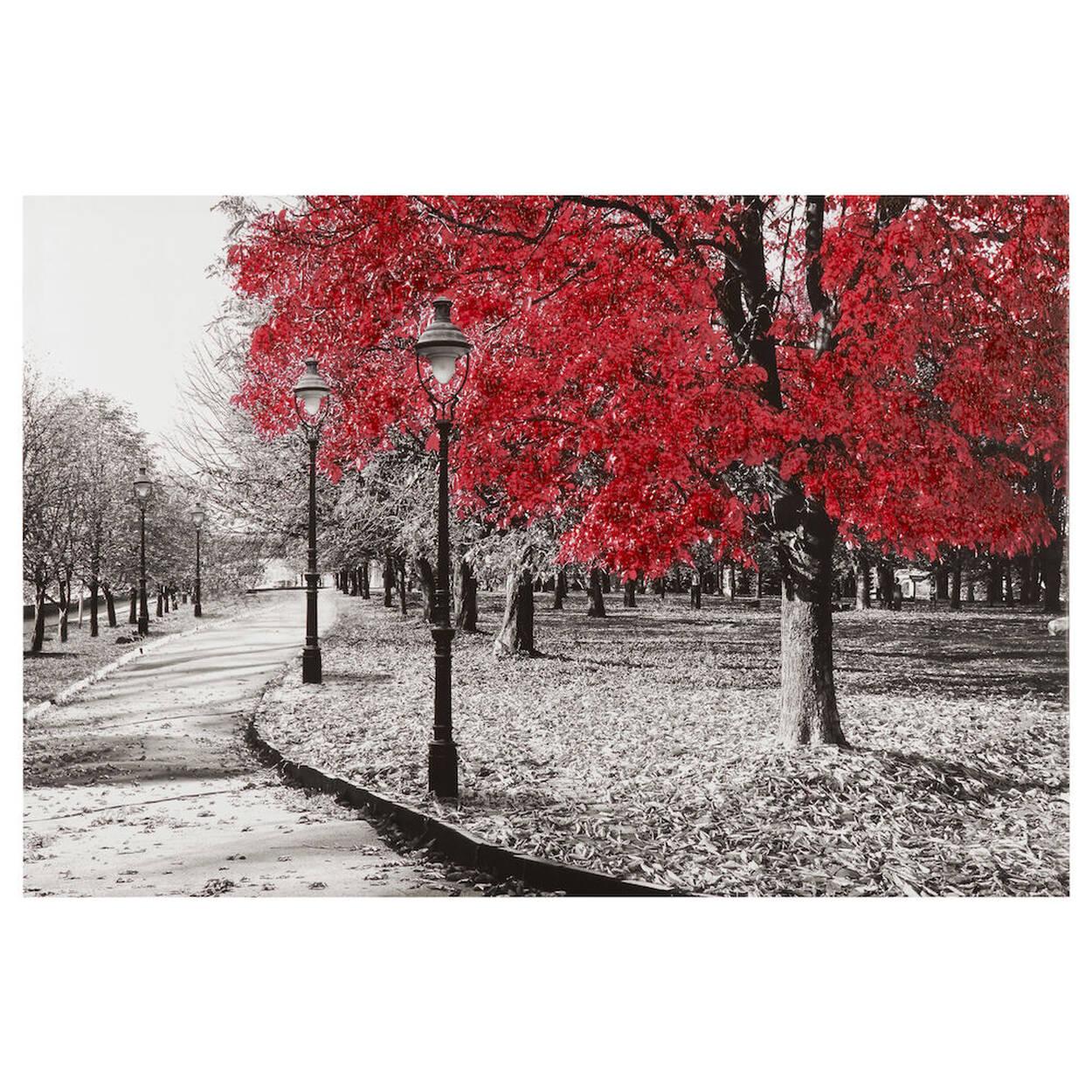 Tableau imprimé arbres au parc avec embellissement au gel