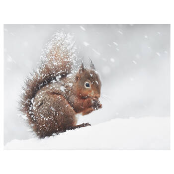 Squirrel in Snow Printed Canvas