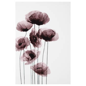 Rose Poppies Printed Canvas