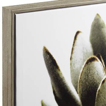 Framed Succulent Printed Canvas