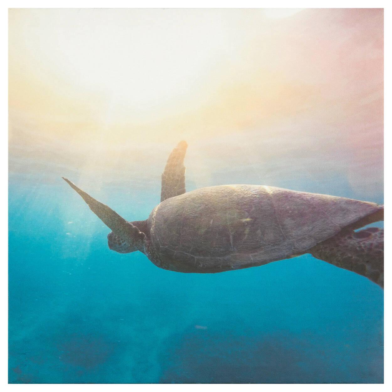 Swimming Sea Turtle Printed Canvas