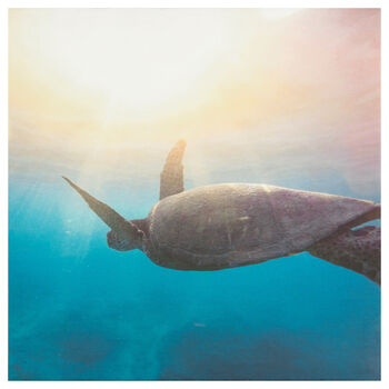 Swimming Sea Turtle Printed Canvas