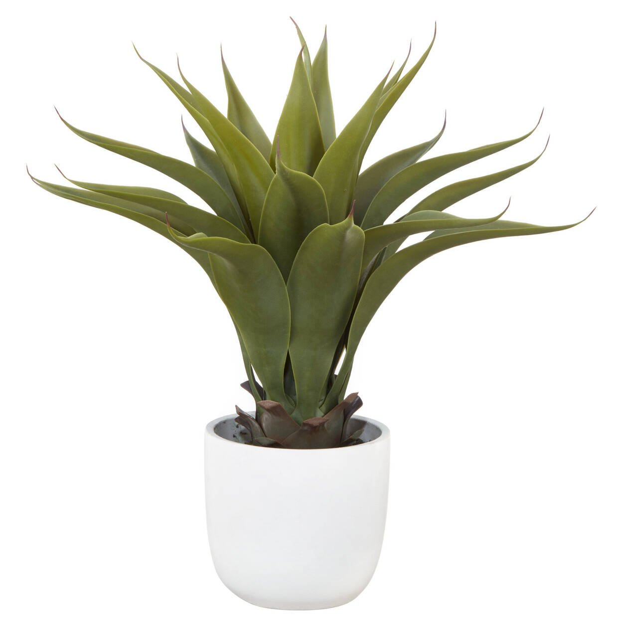 Cement Potted Greenery