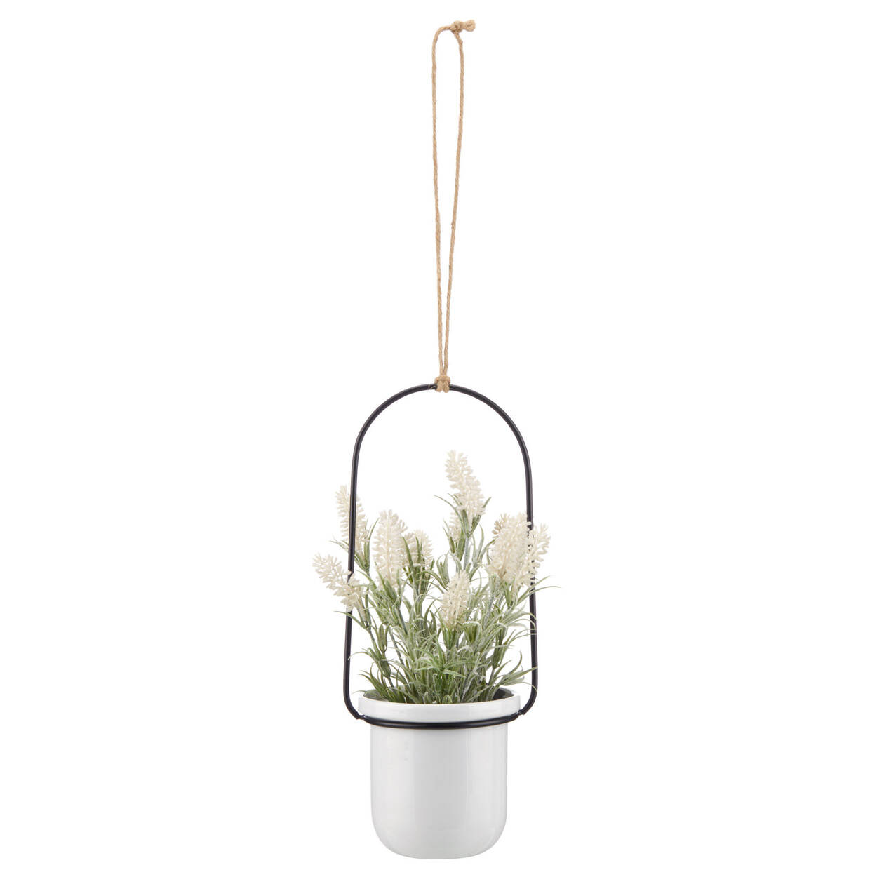 Hanging Flower in a Pot