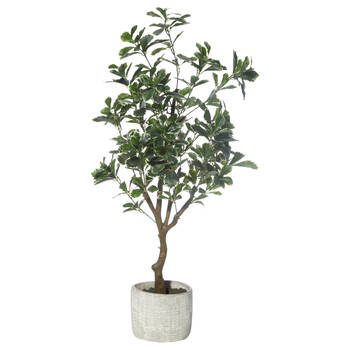Artificial Aralia Tree